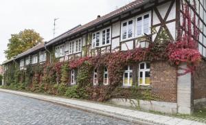 Riddagshausen. Foto: Peter Sierigk