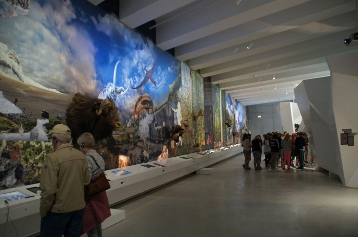 Paläon Museum