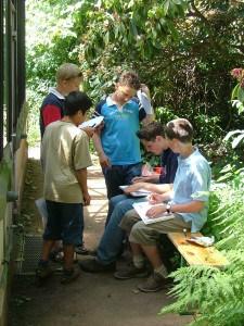 Eine Kleingruppe beantwortet knifflige Fragen zur Botanik. Foto: TU
