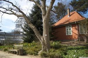 Das Flößerhaus im Botanischen Garten dient als Forschungslabor. Foto: TU