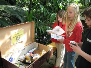 Der Tropenkoffer bringt Schülerinnen auf die Spur. Foto: TU