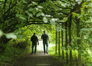 Ein Spaziergang durch das Arboretum lohnt sich. Unser Bild zeigt den Kornelkirschen-Gang. Foto: Peter Sierigk