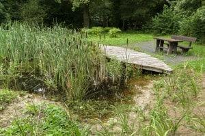 Entwässerungsgräben münden in drei Teichen. Foto: Peter Sierigk