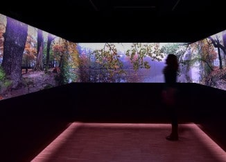Blick auf die Foto-Licht-Ton-Installation, mit der Jahres- und Tageszeiten im Naturschutzgebiet Riddagshausen simuliert werden. Foto: Andreas Greiner-Napp