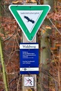 Die Stiftung Braunschweigischer Kulturbesitz ist einer der größten Waldbesitzer in Niedersachsen. Foto: Andreas Greiner-Napp