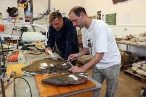 Dr. Ralf Kosma (l) und Präparator Sebastian Radecker (r) bei der Analyse des Fundes. Foto: SNHM