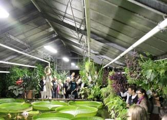 Großer Besucherandrang im Victoria-Gewächshaus zur Victoria-Nacht im Jahr 2013. Foto: TU