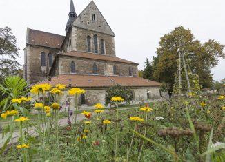Klosterkirche Riddagshausen. Foto: Peter Sierigk