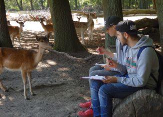 Außerschulisches Lernen ist Teil des Stundenplanes der Praxisklasse Pestalozzistraße. Foto: HS Pestalozzistraße