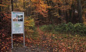 Informationstafeln stehen am Wegesrand. Foto: Meike Buck