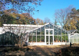 Das neue Gewächshaus im Botanischen Garten für die Victoria-Seerose dient aktuell noch als Überwinterungsquartier für andere Pflanzen. Foto: Botanischer Garten