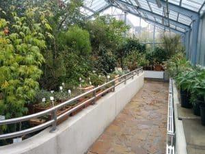 Quartier für andere Pflanzen im Winter 2018. Foto: Botanischer Garten