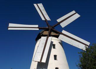 Die fünfflügelige Holländer-Windmühle Wendhausen. Foto Günter Jung