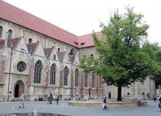 Die Heinrichslinde auf dem Domplatz. Foto: meyermedia