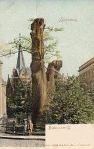 Alte Postkarte mit derr Heinrichslinde (in der Mitte um 1830 abgerissene Stiftsgebäude). Foto: Archiv Ostwald