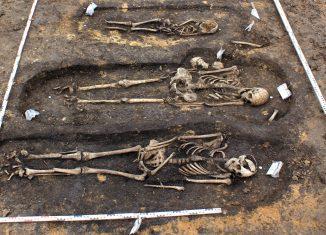 Die Skelette von Gevensleben wurden auf das Jahr um 700 n.Chr. datiert. Foto: Seminar für Ur- und Frühgeschichte der Georg-August-Universität Göttingen