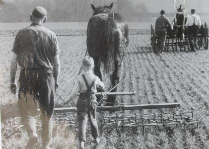 Die beschwerliche Feldarbeit früher Generationen wird anhand einer Reihe von Fotos veranschaulicht. Foto: Der Löwe