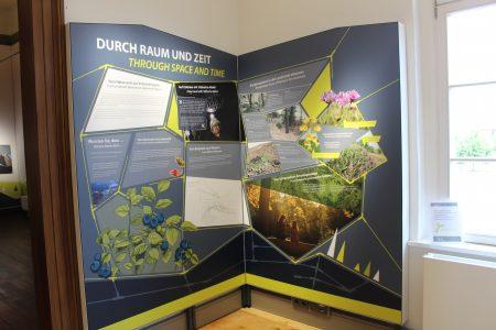 Moderne Informationstafeln führen Besucherinnen und Besucher in die Themen des Welterbes ein. Foto: Stiftung UNESCO-Welterbe im Harz