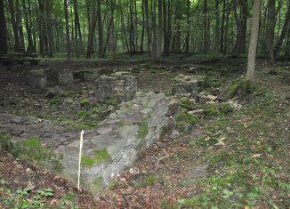 Die Grundmauern der Elmsburg. Foto: Monika Bernatzky
