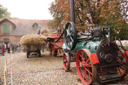 Lanz Lokomobile beim Dreschen. Foto: Magnus Tomforde
