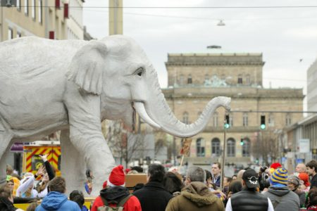 Traditionell führt ein Motivwagen mit einem Elefanten den Umzug an. Foto: Stadtmarketing/Daniel Möller