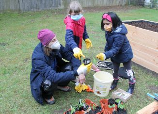 Karin Hollweck erklärt Olga (8) und Vera (6) die jungen Pflanzen. Foto: Der Löwe