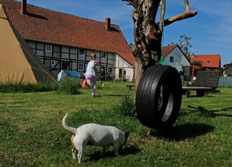 : Viel Platz zum Toben: der große Garten hinter dem alten Fachwerkhaus. Foto: Rosemarie Garbe